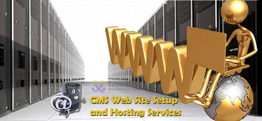 Sebastian Marketing Services CMS Set Up and Hosting